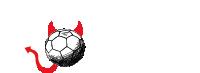 Handballhölle – Aus Liebe zum Handball Logo
